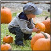 Kid_lifting_pumpkin_medium
